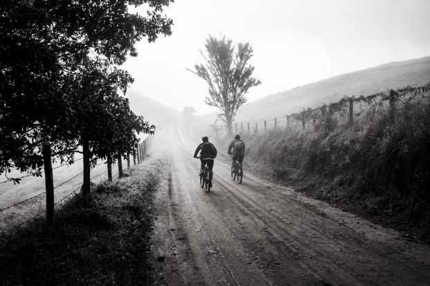bike-trip-friends-cycling-163305